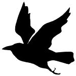 Daneshill School Logo