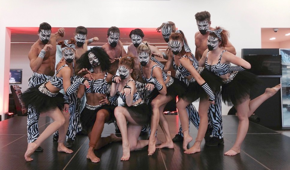 Performers dressed in bespoke Zebra costumes